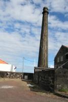 Pico Whale Factory São Roque