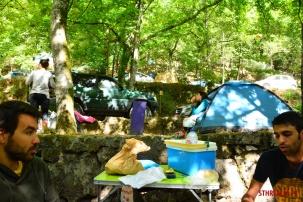 Vidoeiro Camping