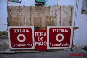 Feira_De_Maio_Azambuja_2016_22